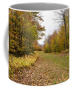 Beautiful Vermont Scenery 25 Coffee Mug