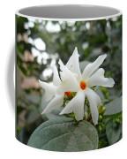 Beautiful White Flower With Orange Center Coffee Mug