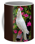 Beautiful White Pigeon Coffee Mug