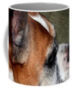 Beautifully Aged Coffee Mug