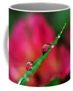Beauty After The Rain Coffee Mug