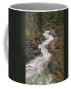 Beauty Creek, Banff National Park Coffee Mug