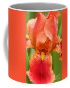 Beauty In The Rain Coffee Mug