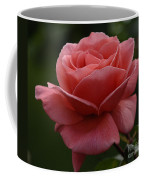 Beauty Of A Rose Coffee Mug