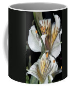 Beauty Untold Coffee Mug