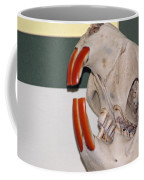 Beaver Teeth Coffee Mug