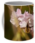 Bee Fly Feeding 1 Coffee Mug