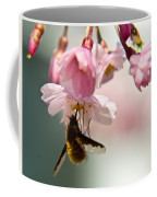 Bee Fly Feeding 2 Coffee Mug