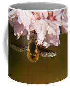 Bee Fly Feeding 5 Coffee Mug