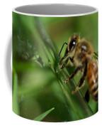 Bee In Green Coffee Mug