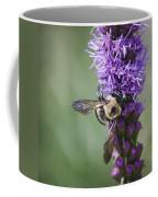Bee On Gayfeather Squared 2 Coffee Mug