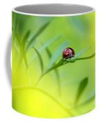 Beetle Butt Coffee Mug
