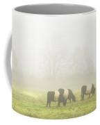 Belted Galloway Cows Grazing On Foggy Farm Field Maine Coffee Mug