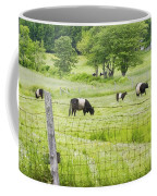 Belted Galloway Cows On  Farm Rockport Maine Photo Coffee Mug by Keith Webber Jr