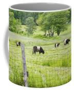 Belted Galloway Cows On  Farm Rockport Maine Photo Coffee Mug