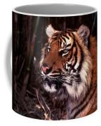 Bengal Tiger Watching Prey Coffee Mug