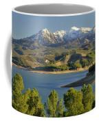 Bermejales Lake Coffee Mug