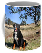 Bernese Mountain Dog In California Chaparral Coffee Mug