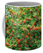 Berries In Profusion Coffee Mug