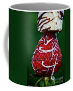 Berry Banana Kabob Coffee Mug by Susan Herber