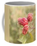 Berry Good Coffee Mug by Kim Hojnacki