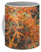 Berry Orange Coffee Mug