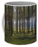 Beyond The Woods Coffee Mug