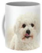 Bichon Frise With Tongue Out Coffee Mug