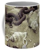 Big Bang Theory Coffee Mug