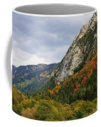 Big Cottonwood Canyon 2 Coffee Mug