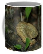 Big Old Mushroom Coffee Mug