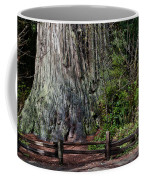 Big Tree Coffee Mug