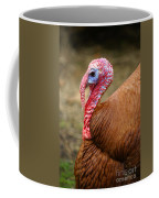 Big Turkey Coffee Mug