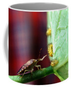 Biocontrol Of Bean Beetle Coffee Mug