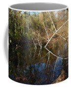 Birch Eye Coffee Mug