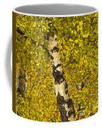 Birch Forest In Finland Coffee Mug