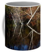 Birch Reflections Coffee Mug