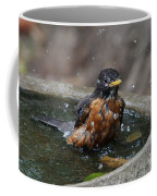 Bird Bath Fun Time Coffee Mug