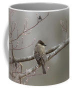 Bird - Eastern Phoebe - Very Contented Coffee Mug