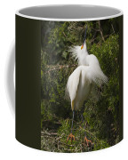 Bird Mating Display - Snowy Egret  Coffee Mug