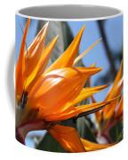 Bird Of Paradise Flowers Coffee Mug