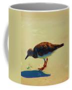 Bird On Daytona Beach Coffee Mug