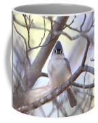 Bird - Tufted Titmouse - Busted Coffee Mug