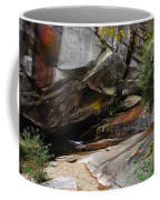 Birdrock Waterfall Coffee Mug