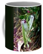 Birds And Bees And Luna Moths Coffee Mug