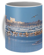 Birds Only Beach Coffee Mug