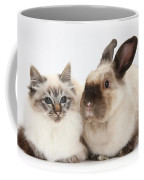 Birman Cat And Colorpoint Rabbit Coffee Mug