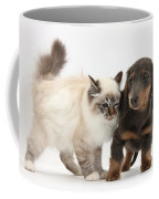Birman Cat And Dachshund Puppy Coffee Mug