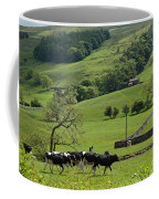 Bishopdale In The Yorkshire Dales National Park Coffee Mug by Louise Heusinkveld