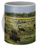 Bison Graze On Grasslands In The Park Coffee Mug